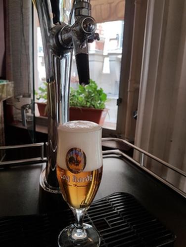 Verre de bière pression Coq Hardi avec la mousse