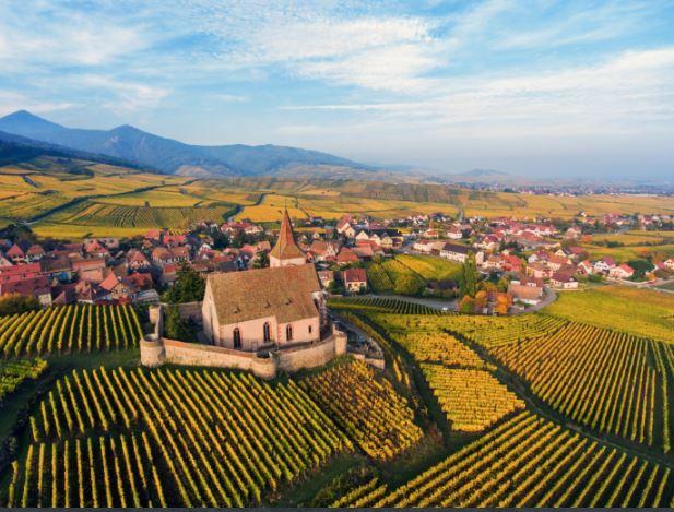 Vignoble Blienschwiller Alsace